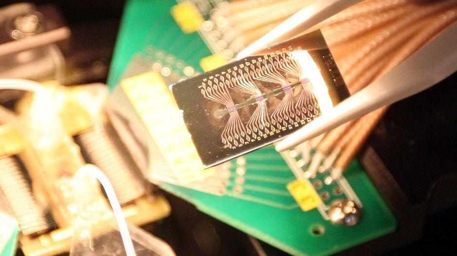 biosensori-siru
